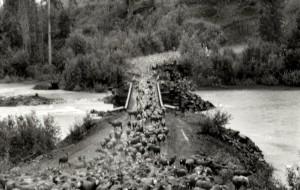 Bowser-bridge-crossing-997px